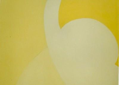 O Instante do Voo 2001 Ol. s. tela 60x50