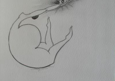 ilustração (7)